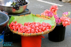 Fruits Stopover Liliw Laguna