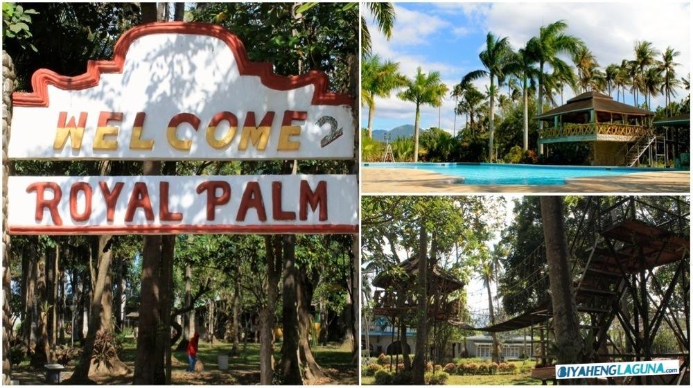 Team Building Venues- Royal Palm