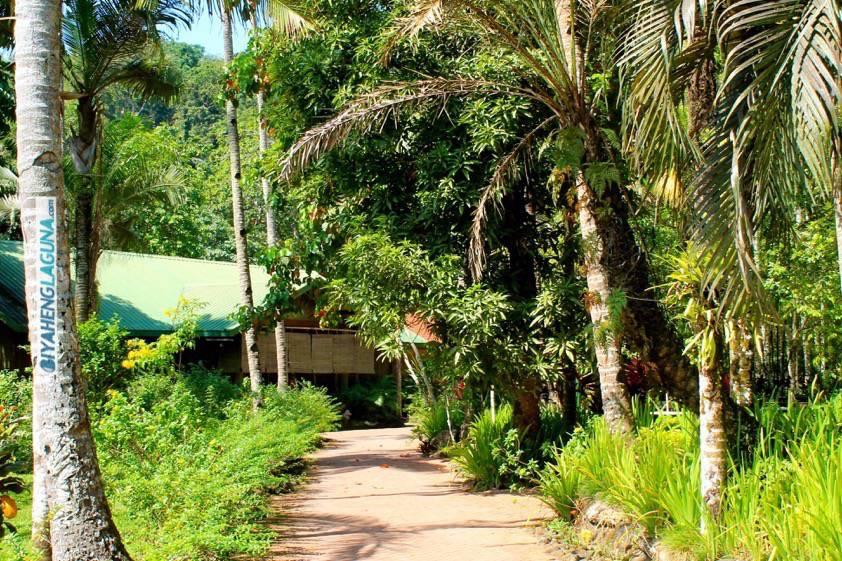 Hidden Valley Springs Resort Biyaheng Laguna